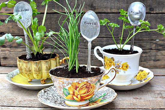regalos-diy-dia-madre-plantas