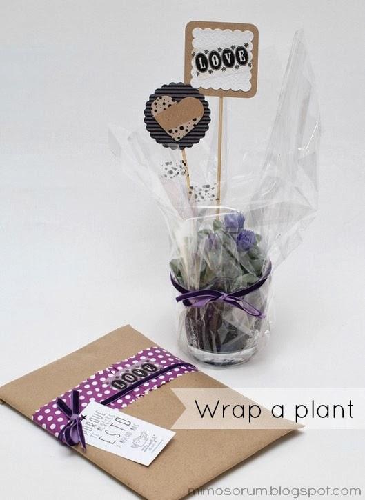 DIY: envolver una planta para regalo - wrap a plant