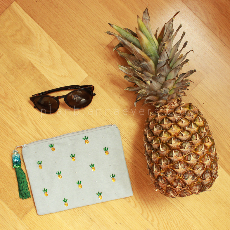 Plan B anna evers DIY Pinapple Pouch