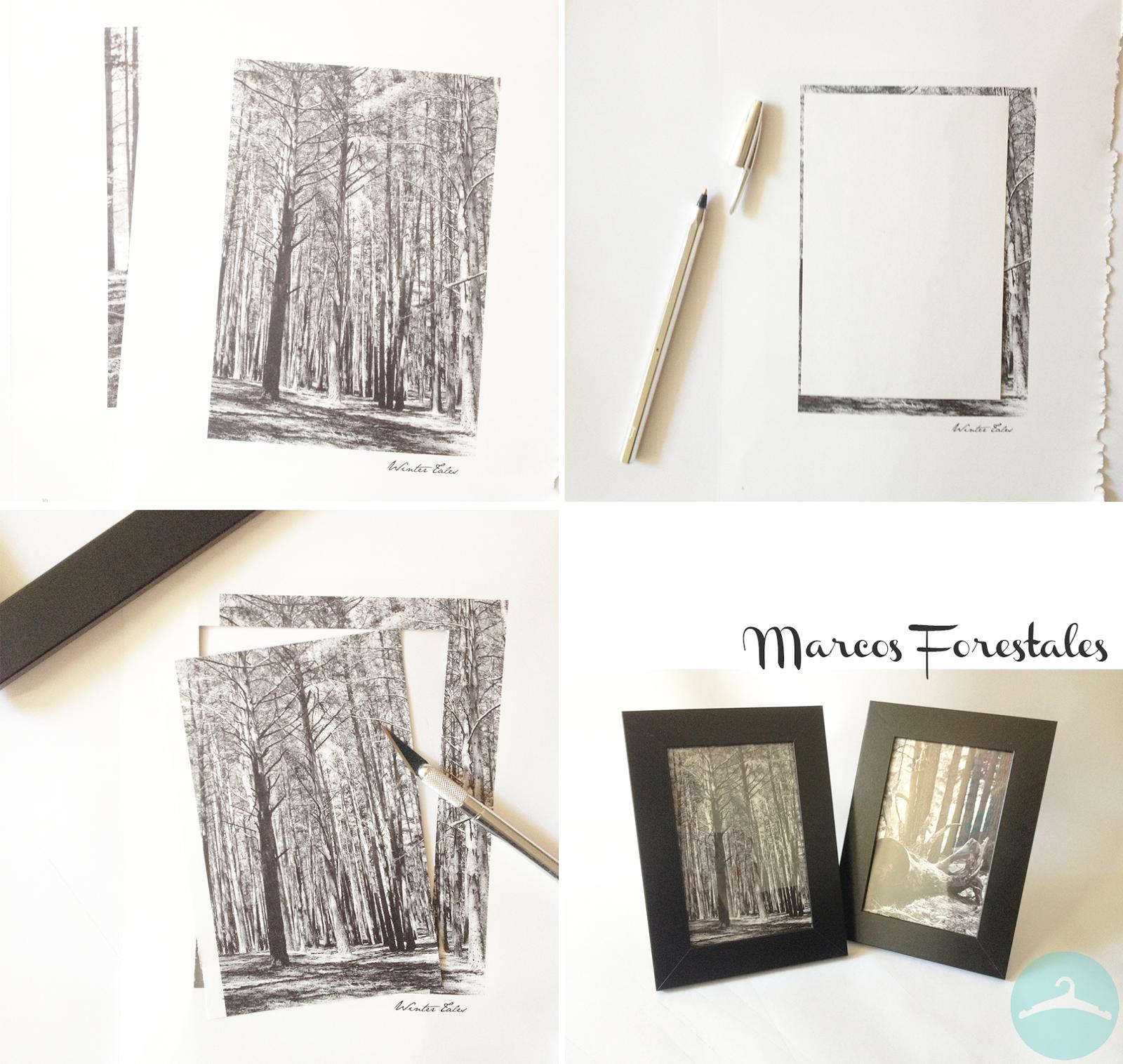diy - marcos que encierran naturaleza - Handbox Craft Lovers ...