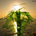 Ruben Lafuente, Reciclado Creativo. Concurso de fotografía Upcycling
