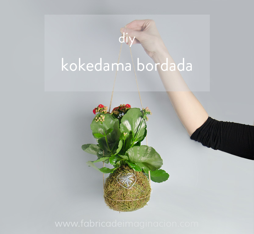 kit diy kokedama