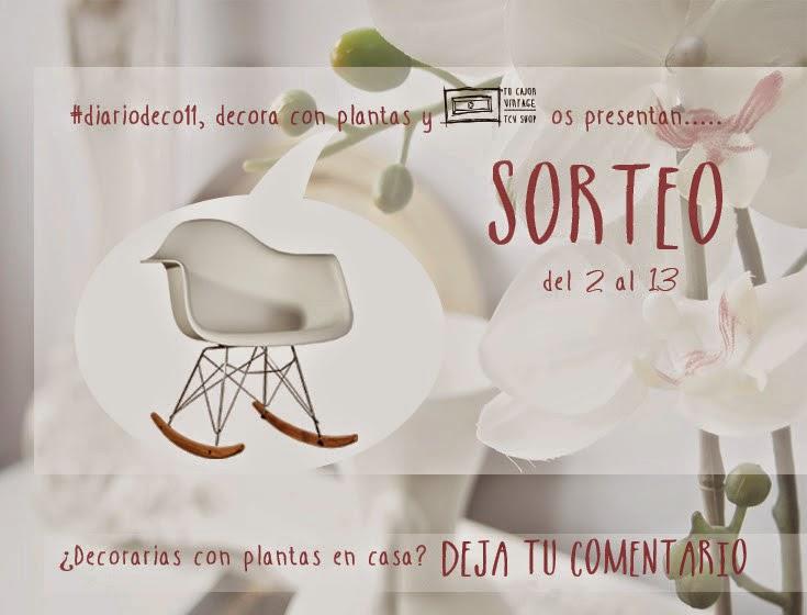 Diariodeco11: Diy Floreros de cemento pintados con suculentas + Sorteo Mecedora EAMES