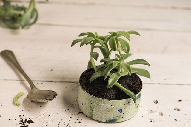 listo-para-barnizar-jardin-vertical-pangala