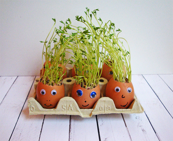 huevos-pascua-plantas