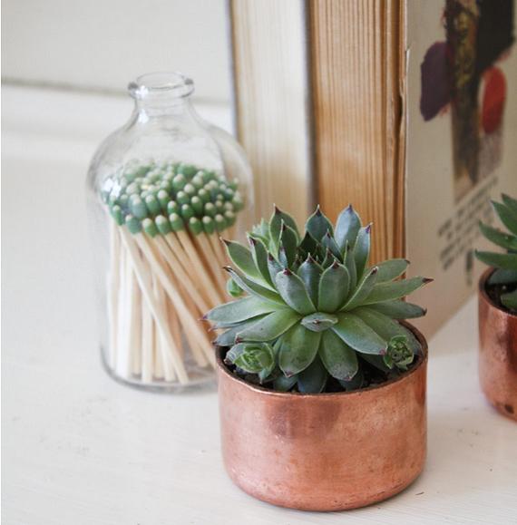 maceteros-cobre-plantas
