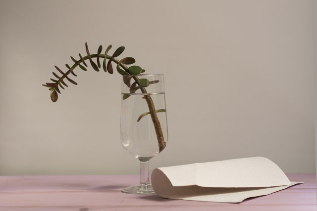material-básico-para-florero-improvisado-pángala
