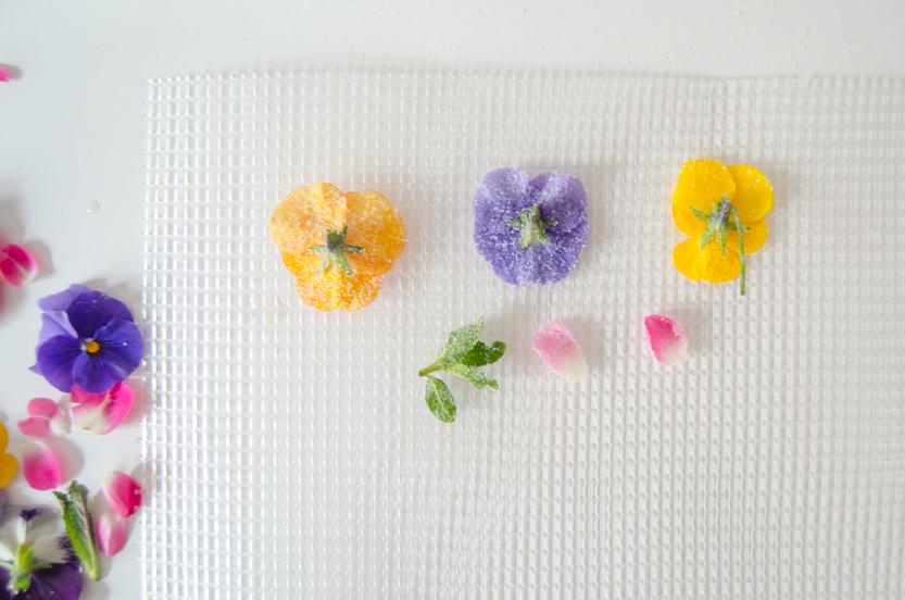 diy-cristalizar-flores-comestibles-azucar-paso-06