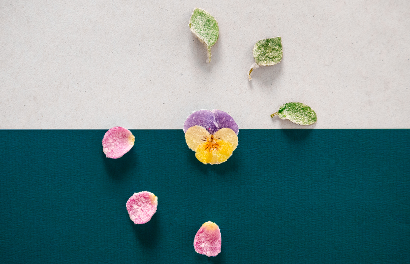 flores-cristalizadas