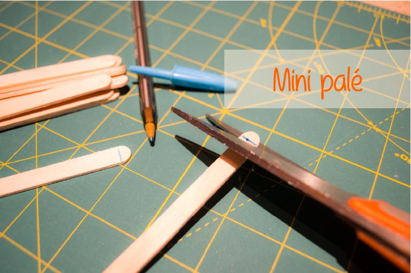 Mini-Pale-C&D