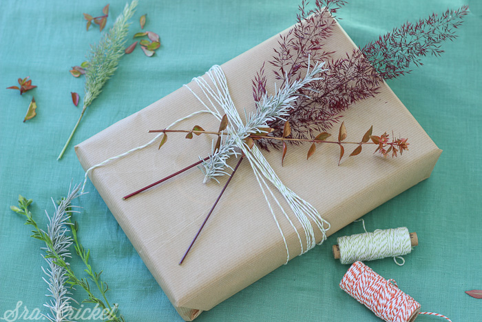 empaquetado-creativo-con-hierbas