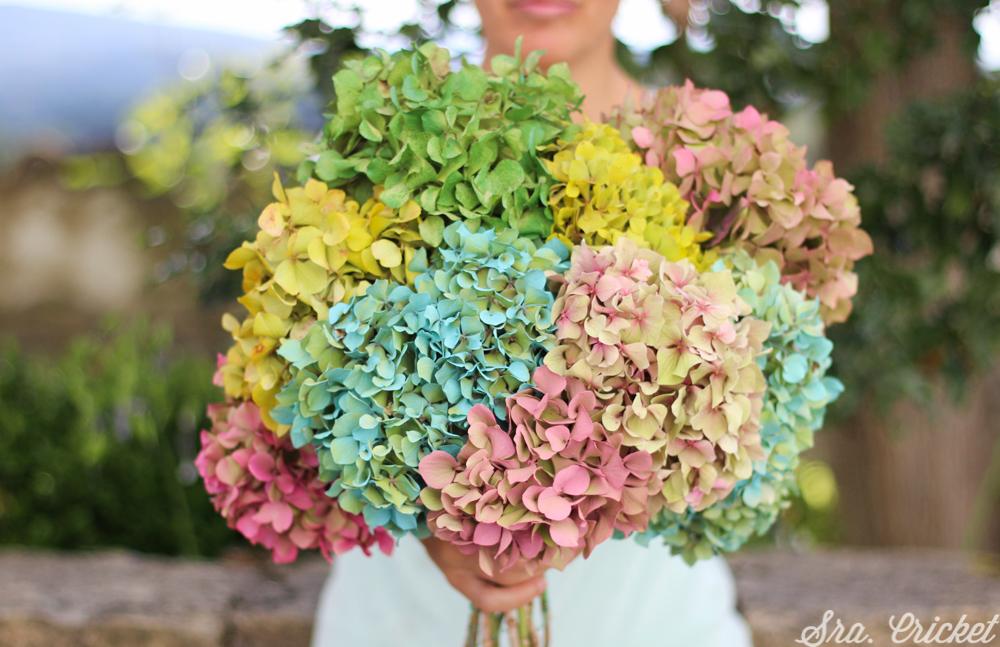 flores-de-colores-sra-cricket