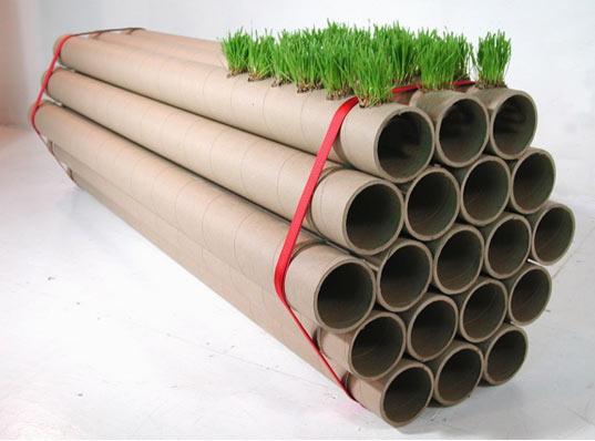 reciclar tubos de cartón en un huerto urbano