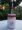 Haz tu vaso para smoothie reciclando