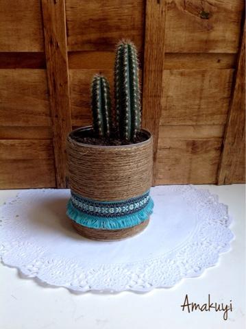 Tiesto-cactus-cuerdas-latas-tutorial
