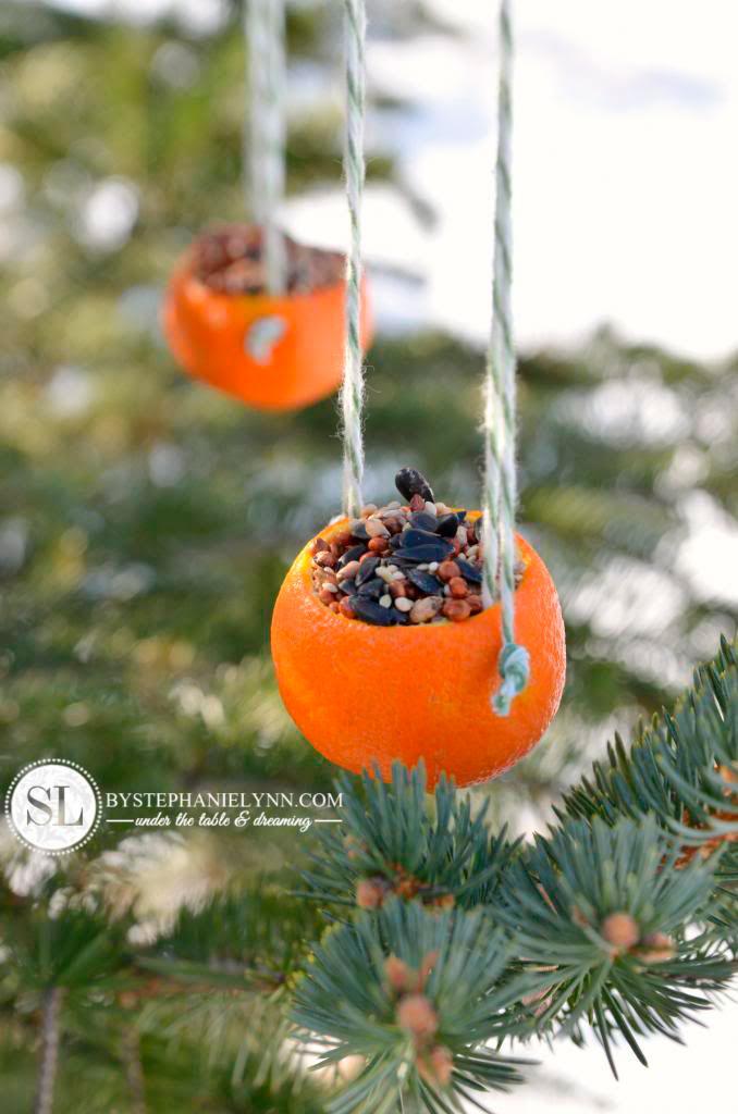 reciclar pieles de naranja para hacer comederos para pájaros