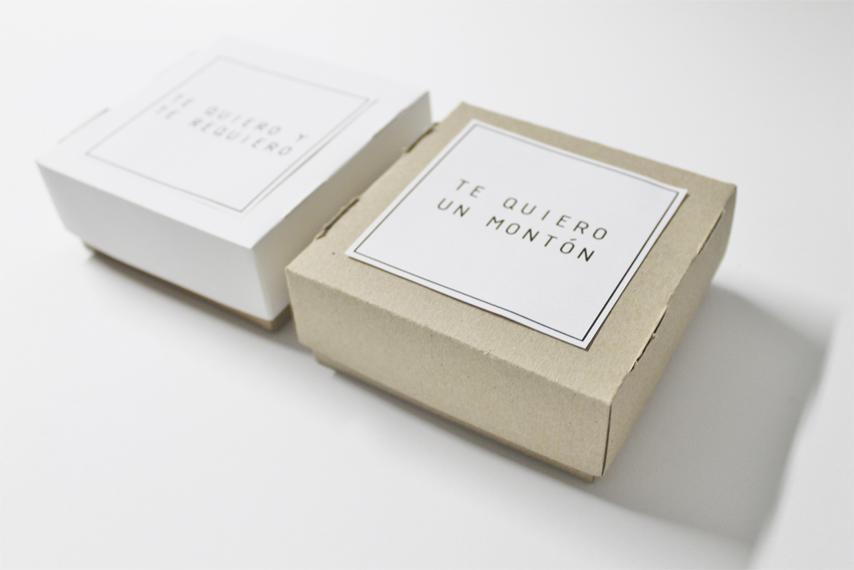 DIY Caja para galletas (19)