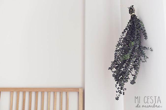 eucalipto pared DIY_2