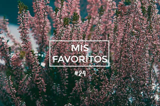 Mis Favoritos #24