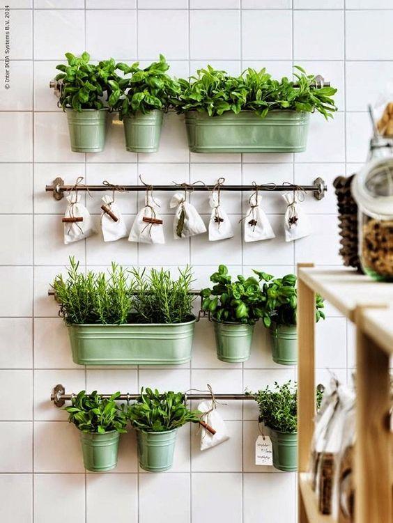 Interior de una cocina con una zona verde de plantas aromáticas