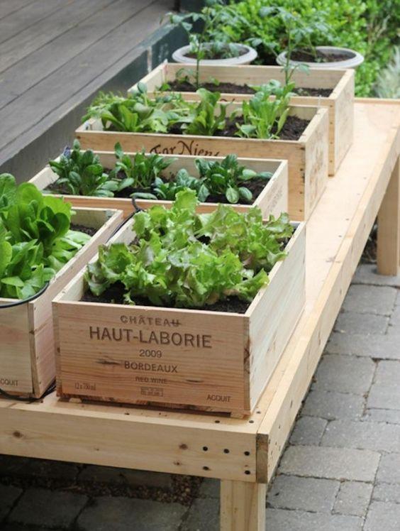 Cajas de madera para crear una zona verde