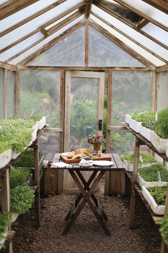 Invernadero con cultivos de diferentes plantas