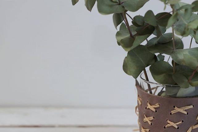 florero orgánico missoluciones-pángala