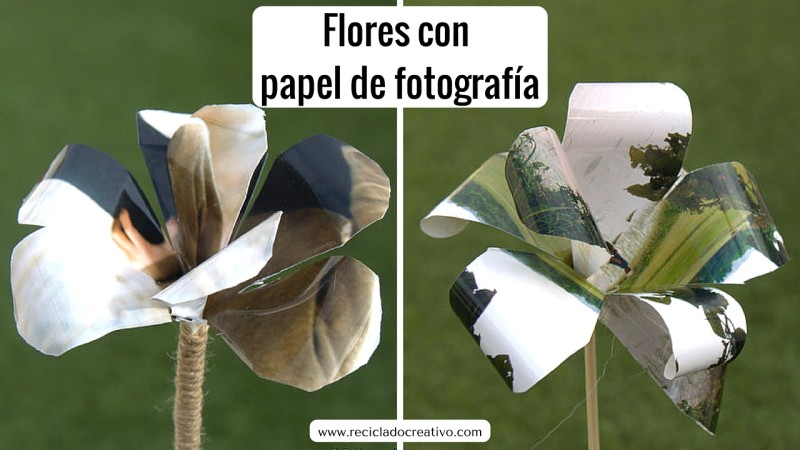 Flores con papel de fotografía. Gladiolos