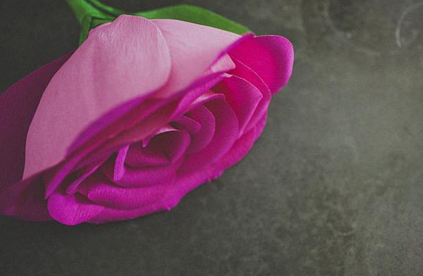 rosa-gigante-papel-diy