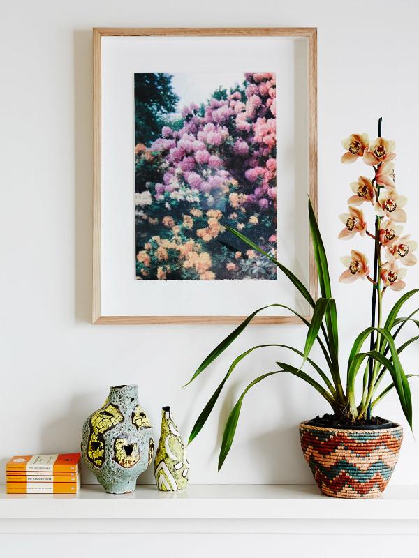 Decorar con plantas para dar luminosidad