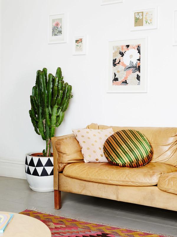 Decorar con plantas y conseguir luz en habitaciones