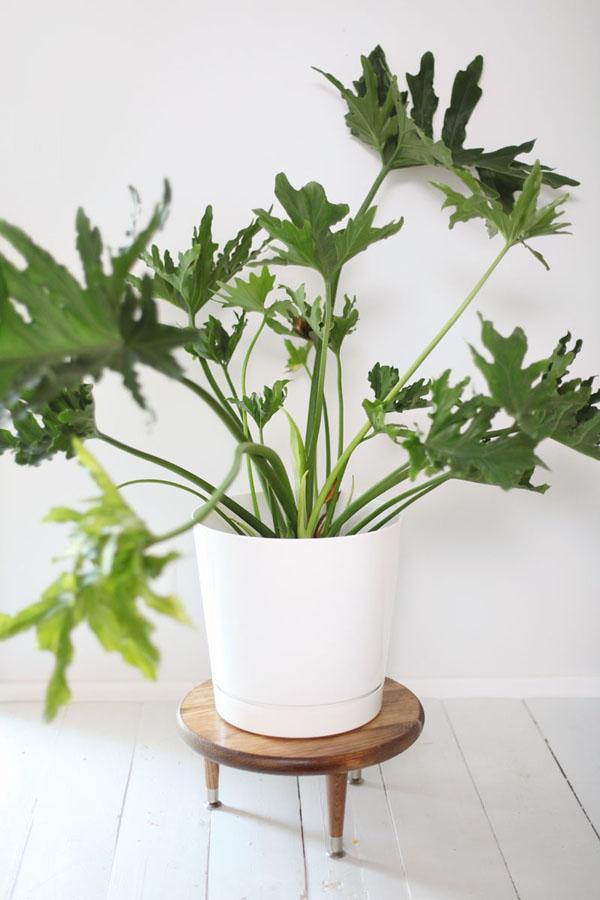 porta-plantas-mid-century-diy