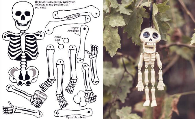 esqueletomcm