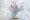 Manualidades para niños: árbol con bellotas de colores