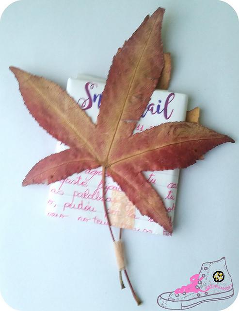 packaging con hojas secas