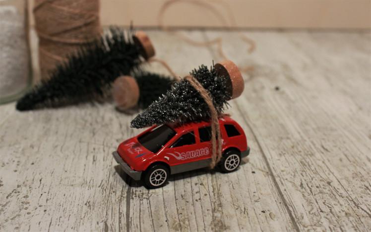 coche-arbre