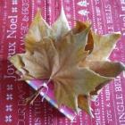 https://cosasmonasm.blogspot.com.es/2016/12/empaquetado-bonito-diciembre-hojas-secas.html
