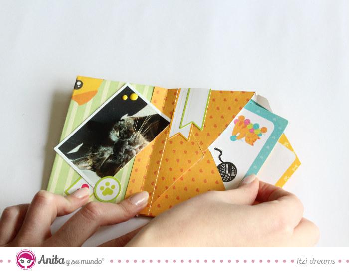 album-fotos-mascotas