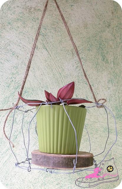 caetita alambre para plantas