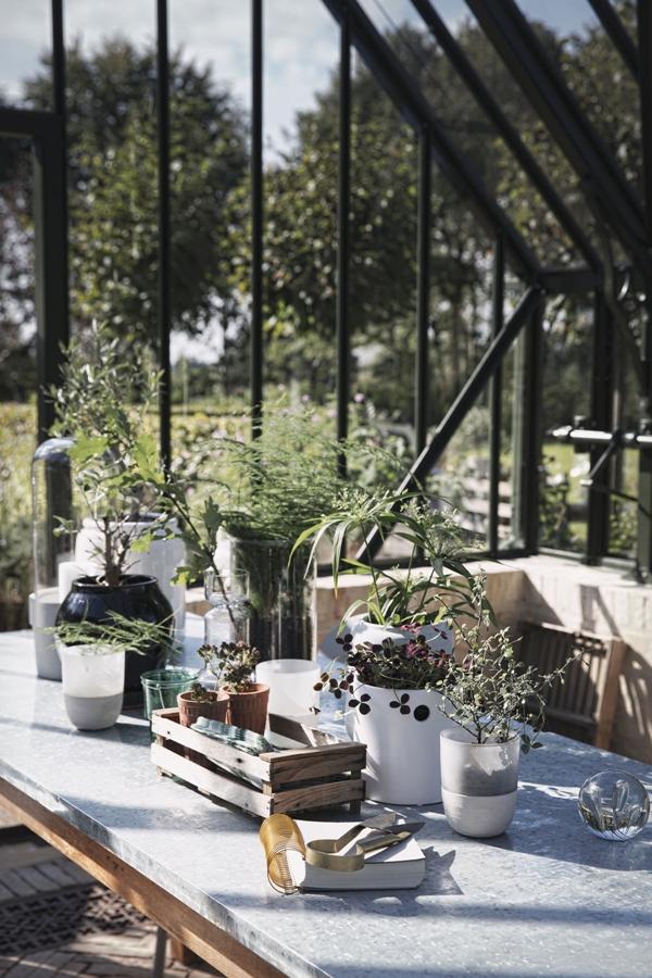 invernadero decorado