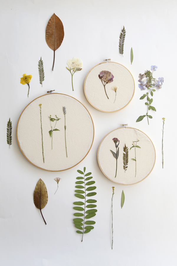 flores-secas-bastidor-diy