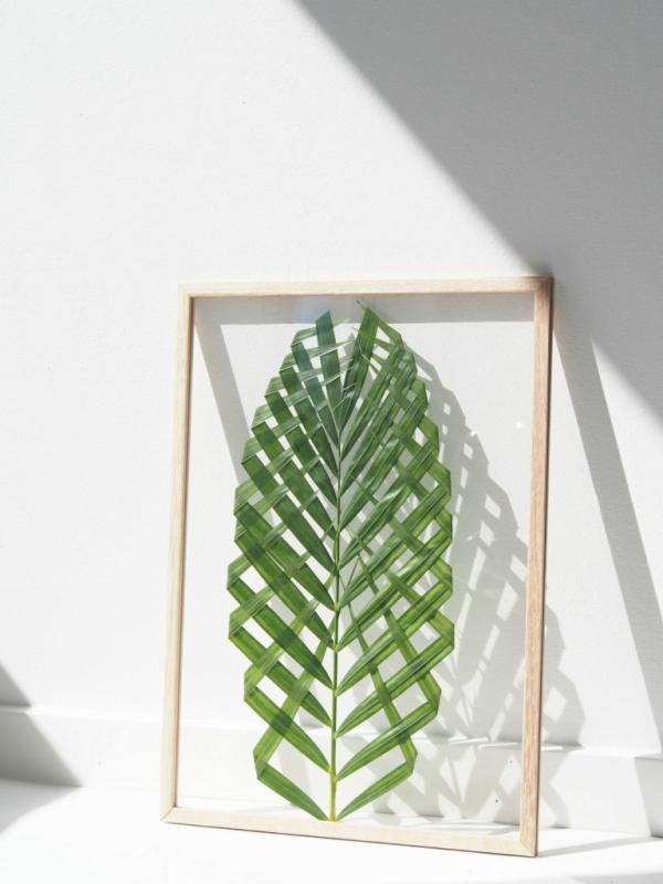 DIY_Cuadros_botánicos