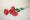 DIY Aprende ha hacer rosas perennes de goma eva