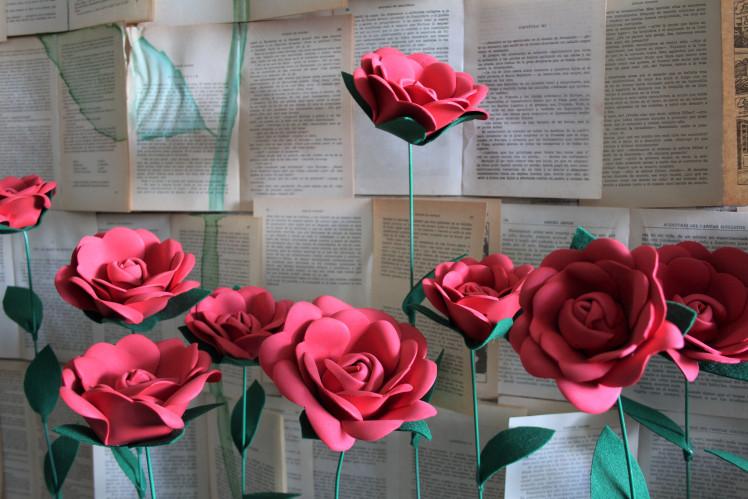 rosas con fondo 2