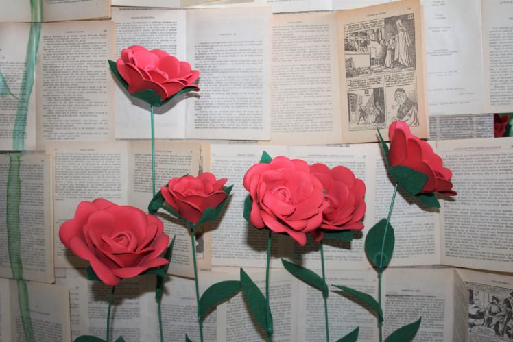 rosas con fondo