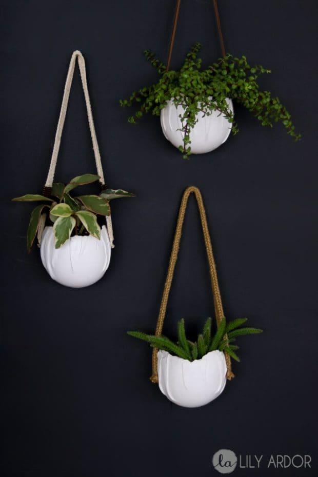 Macetas colgantes con plantas crasas