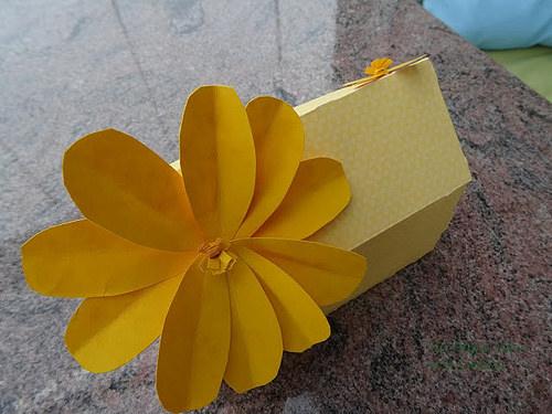 Empqtdbonito-Yellow Box-detalle 1