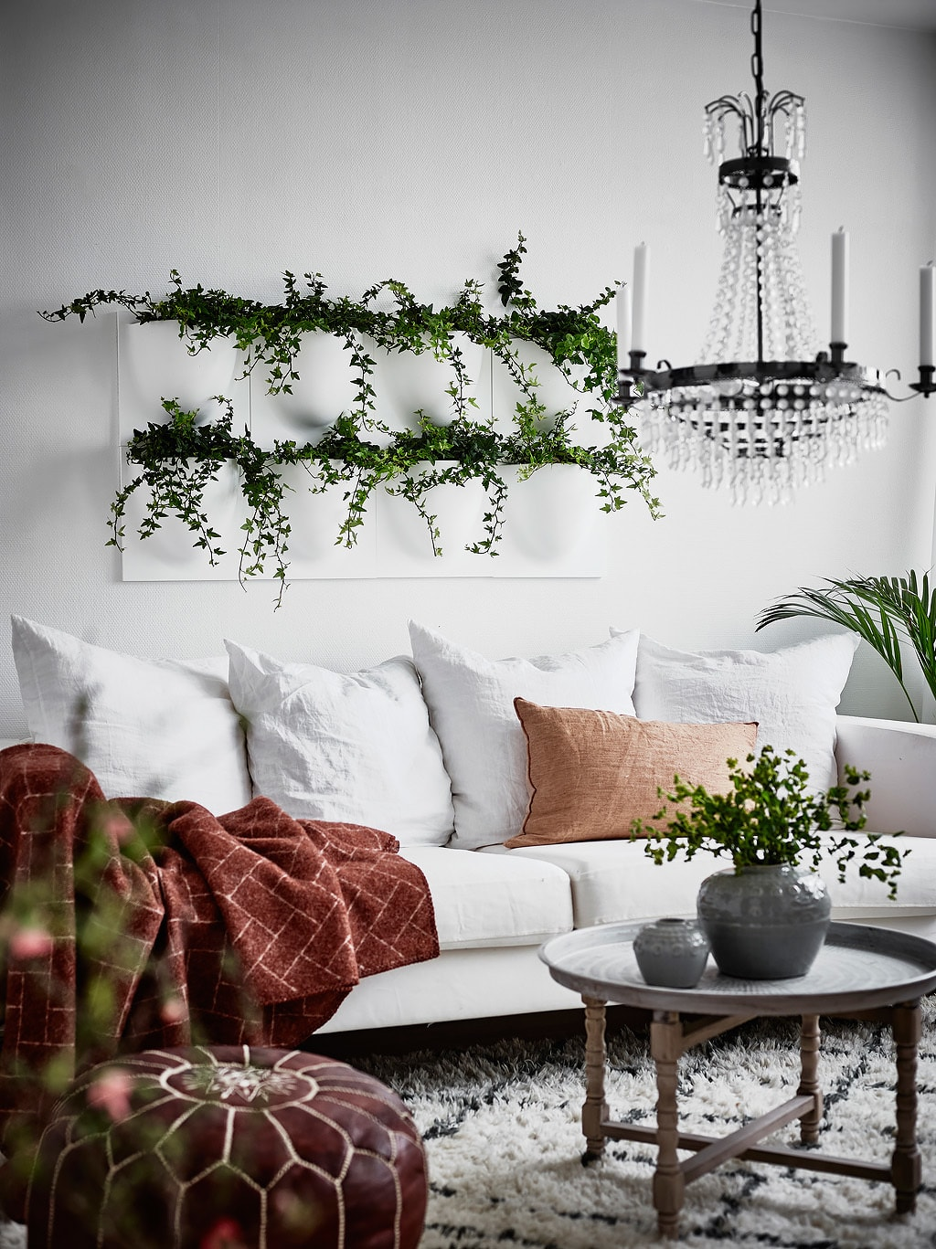 Decorar_con_plantas_de_interior_un_mini_piso_decoinspirción_decolook_detalle_decoración_pared