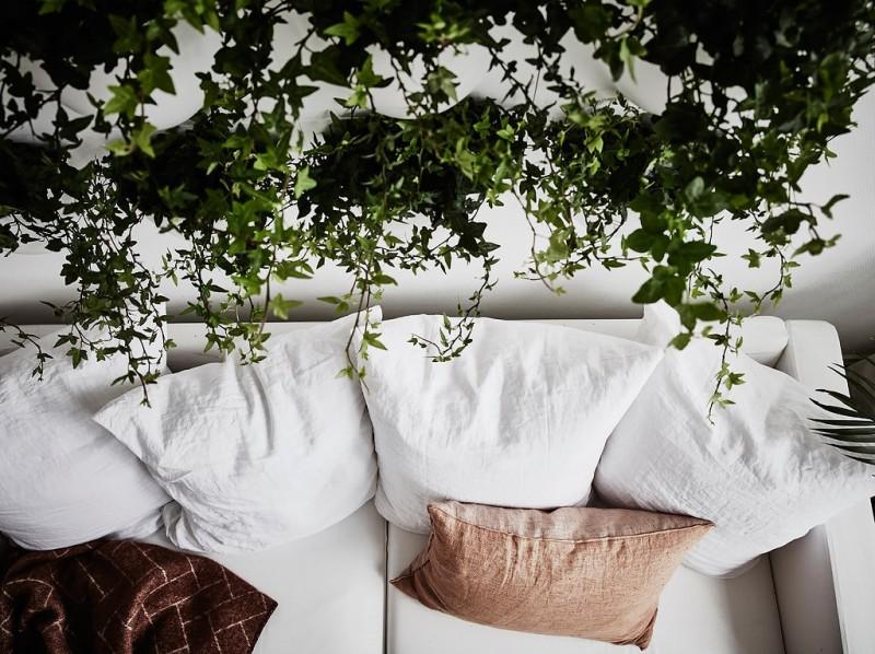 Decorar_con_plantas_de_interior_un_mini_piso_decoinspirción_decolook