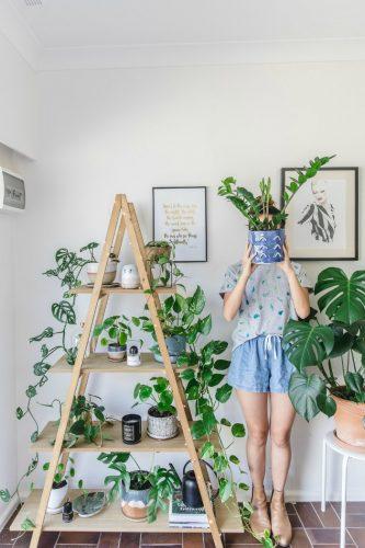 Los Soportes para plantas más originales